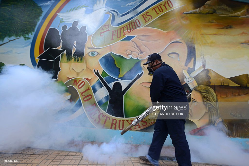 A worker of the Health Ministry fumigates against Aedes aegypti mosquito after Honduran President Juan Orlando Hernandez launched the national campaign against dengue fever, at the Kennedy community in eastern Tegucigalpa, on February 17, 2014. Dengue fever killed at least 27 people and infected more than 30,000 last year in Honduras. Dengue, transmitted by the Aedes aegypti mosquito, occurs in Central America mostly during its rainy season from May to November. The disease causes fever, muscle and joint ache as well as potentially fatal dengue hemorrhagic fever and dengue shock syndrome. AFP PHOTO/Orlando SIERRA
