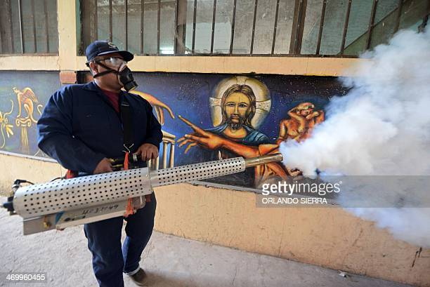 A worker of the Health Ministry fumigates against Aedes aegypti mosquito after Honduran President Juan Orlando Hernandez launched the national...