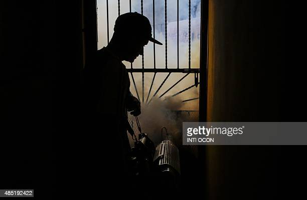 A worker of the Health Ministry fumigates against the Aedes aegypti mosquito to prevent the spread of dengue fever and chikungunya in Managua on...