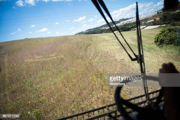 A worker operates a combine machine to harvest soybeans at the Santa Cruz farm near Atibaia Brazil on Wednesday March 29 2017 Brazil is world's...