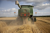 IL: A Wheat Harvest As Extreme Heat Supports Grain Prices