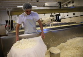 A worker packs cheese curds into wheels at Vella Cheese on June 10 2014 in Sonoma California The Food and Drug Administration has issued an executive...