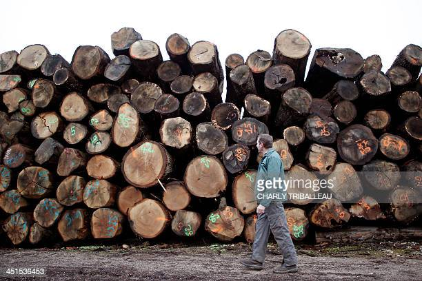 A worker passes by piles of logs for firewood on December 21 2012 in Le PinlaGarenne northwestern France The use of wood for heating cheaper than oil...
