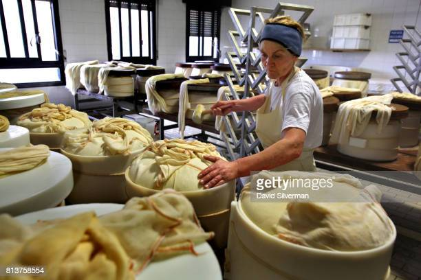 Worker places cheese curd into molds to make ParmigianoReggiano cheese in the traditional method at Caseificio Censi the Censi family dairy on March...