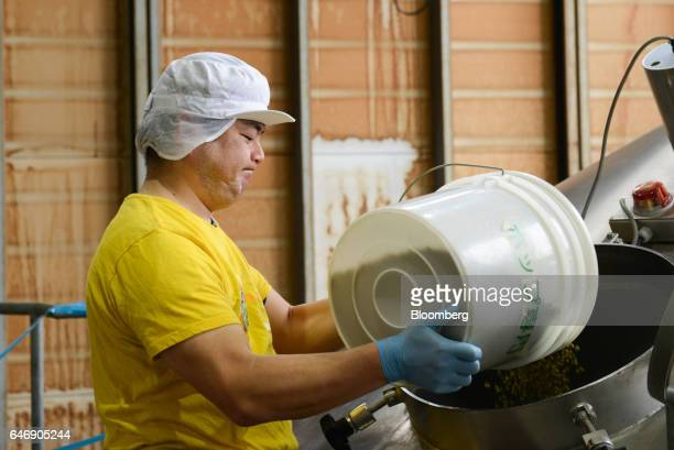 A worker pours hops into a boiling tank at the YoHo Brewing Co brewery in Saku Nagano Prefecture Japan on Friday Jan 6 2017 Craft brewers which...