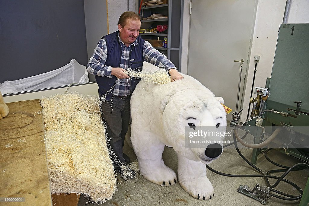 A worker prepares a polar bear at the Steiff stuffed toy factory on November 23, 2012 in Giengen an der Brenz, Germany. Founded by seamstress Margarethe Steiff in 1880, Steiff has been making stuffed teddy bears since the early 20th century ever since her nephew Richard Steiff exhibited the first commercially produced teddy bear in Europe in 1903. Teddy bears are among the most popular children's toys and the company is hoping for a strong Christmas season.