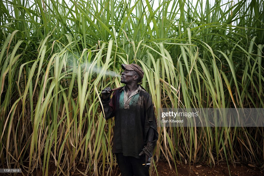 A worker relaxes with a cigarette in a sugarcane field near the Kruger National Park on July 8, 2013 in Komatiepoort, South Africa. South Africa is the world's tenth largest producer of sugarcane with growers annually producing an average of 19.9 million tons of sugarcane per year. The participation of black farmers working on sugarcane production is constantly increasing through the development and empowerment of previously disadvantaged people within their communities.