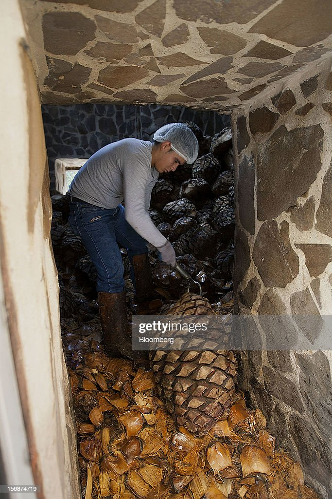 A worker removes tequila agave plant cores, also known as blue agave, from an oven at the Tequila Cuervo La Rojena S.A. de C.V., maker of Jose Cuervo, distillery plant in Guadalajara, Mexico, on Thursday, Nov. 22 2012. There are more than 200 types of agave in Mexico, but use of the blue agave plant was made compulsory in the last century to the issuance of the Official Mexican Standard for Tequila production. Photographer: Susana Gonzalez/Bloomberg via Getty Images