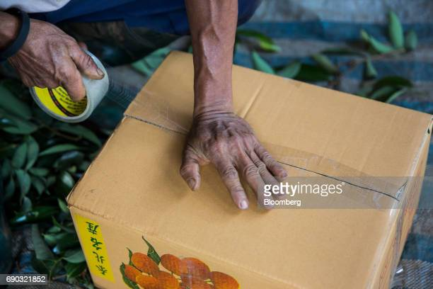 A worker seals a box of harvested lychees at an orchard in the Chai Prakan district of Chiang Mai province Thailand on Saturday May 27 2017...