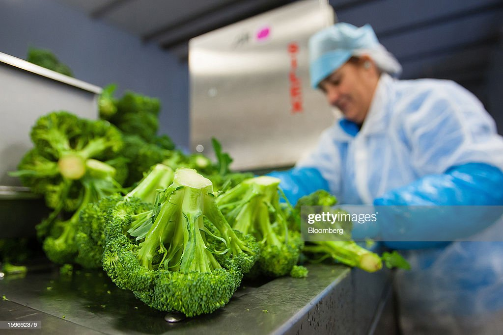 A worker separates newly-harvested broccoli spears at the Monliz-Produtos Alimentares do Mondego e Liz SA frozen food factory in Alpiarca, Portugal, on Friday, Jan. 18, 2013. Portuguese Prime Minister Pedro Passos Coelho says he does not want Portugal to get a second rescue program. Photographer: Mario Proenca/Bloomberg via Getty Images