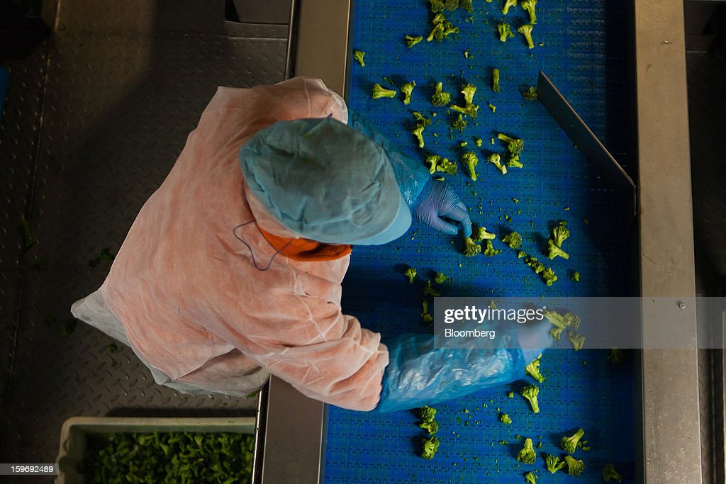 A worker separates newly-harvested broccoli spears on the production line at the Monliz-Produtos Alimentares do Mondego e Liz SA frozen food factory in Alpiarca, Portugal, on Friday, Jan. 18, 2013. Portuguese Prime Minister Pedro Passos Coelho says he does not want Portugal to get a second rescue program. Photographer: Mario Proenca/Bloomberg via Getty Images