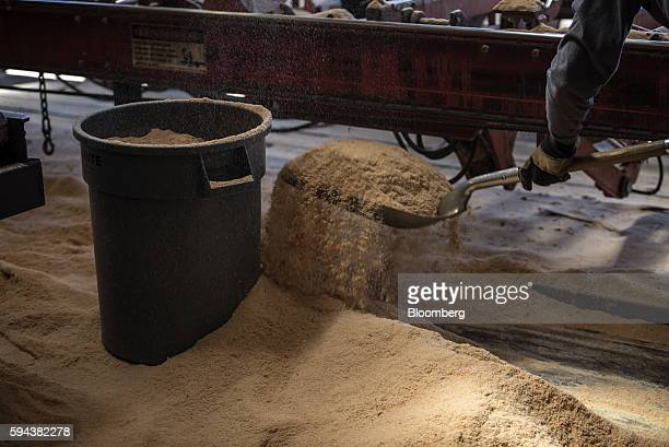 A worker shovels saw dust into a garbage can at the Spotted Owl Timber Inc mill in Santa Fe New Mexico US on Monday Aug 15 2016 Founded in 1991 the...