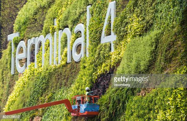 A worker stands in a cherry picker platform while carrying out gardening work on foliage surrounding a sign during a media preview of the new...