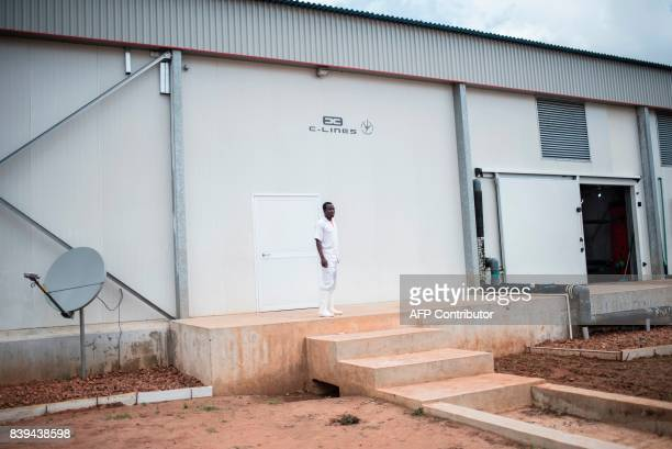 A worker stands outside the Valentine Chicken Hatchery on July 12 2017 Farming in Nigeria is not for the fainthearted Intermittent electricity means...