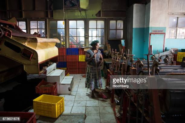 A worker sweeps the floor of the factory of the Geragama Tea Estate operated by Pussellawa Plantations Ltd in Pilimathalawa Central Sri Lanka on...