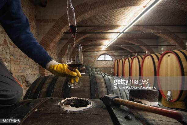 A worker takes the wine from a barrel with Barolo to check the quality on October 17 2017 in the Barolo region Italy Because of the high summer...