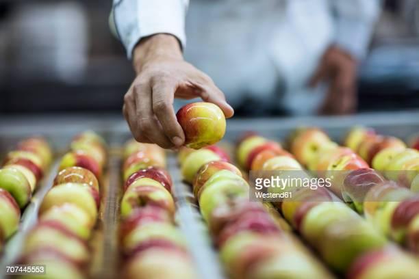 Worker taking apple from conveyor belt in factory