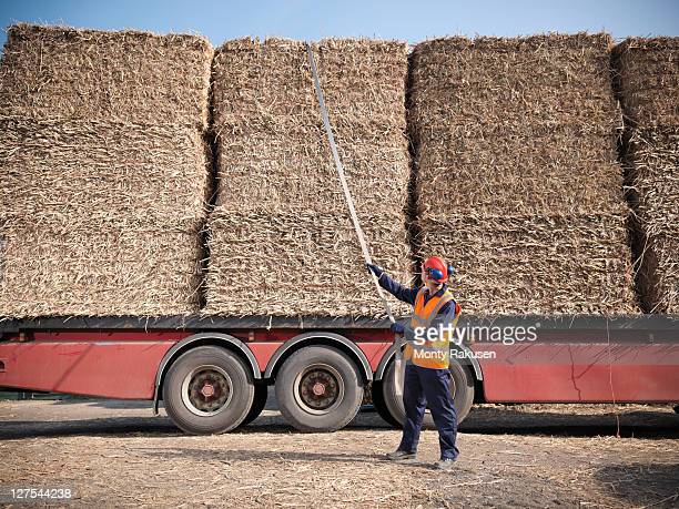 Worker unloading elephant grass fuel