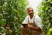 Worker using digital tablet in greenhouse