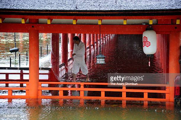 A worker walks a flooded corridor of the Itsukushima Shrine due to the heavy rain triggered by the approach of the Typhoon Sanba on September 17 2012...