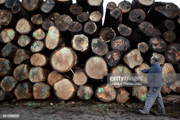 A worker walks among piles of logs for firewood on December 21 2012 in Le PinlaGarenne northwestern France The use of wood for heating cheaper than...