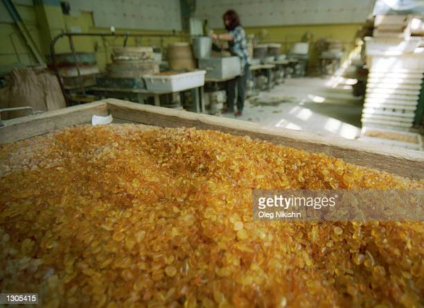 A worker washes amber at an amber factory June 15 2000 in the village of Yantarny 40 miles north of Kaliningrad Russia