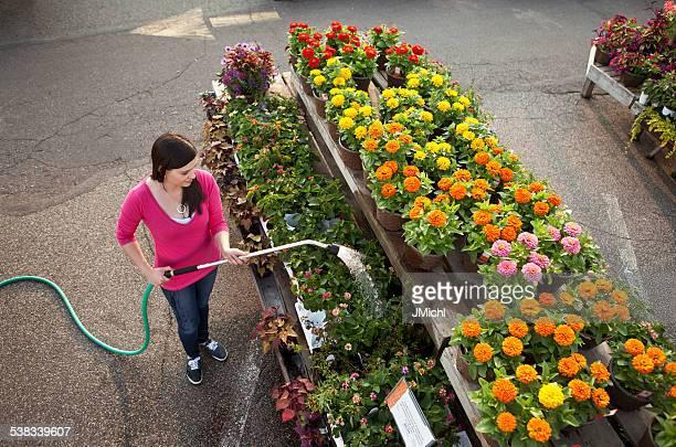 Arbeitnehmer gießen Pflanzen mit Schlauch in einem Garten-Center.