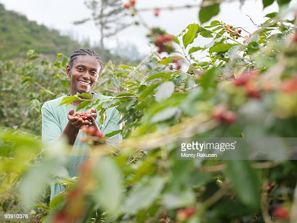 Worker With Coffee Beans In Plantation