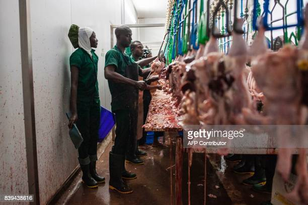 Workers at the Valentine Chicken Abattoir remove the intestines of slaughtered chickens on July 11 2017 Farming in Nigeria is not for the...