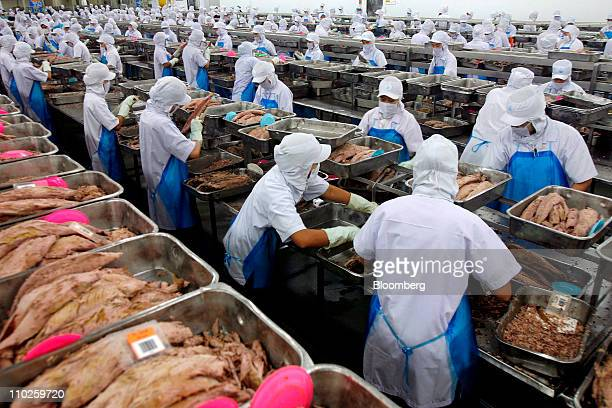 Workers clean steamcooked tuna fish on the canned tuna processing line at Thai Union Frozen Products Pcl's TUF factory in Mahachai Samutsakorn...