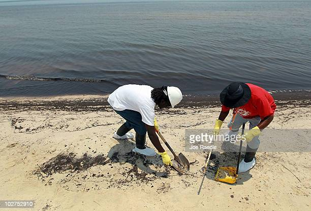 Workers clean up oily globs that washed ashore from the Deepwater Horizon oil spill in the Gulf of Mexico July 9 2010 in Waveland Mississippi...