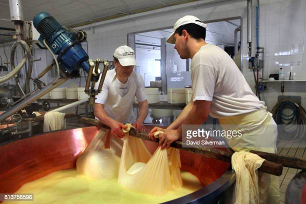 Workers collect fermented curd in muslin cloths to make ParmigianoReggiano cheese in the traditional method at Caseificio Censi the Censi family...