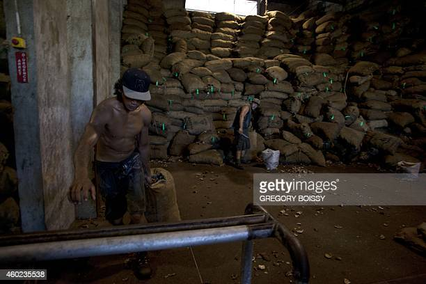 LEYRAL A workers drags a bag of copra the flesh of the coconut at the oil mill of Papeete on December 9 2014 10000 tons of copra are delivered...