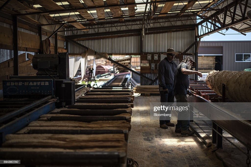 Workers examine a log at the Spotted Owl Timber Inc mill in Santa Fe New Mexico US on Monday Aug 15 2016 Founded in 1991 the family owned and...