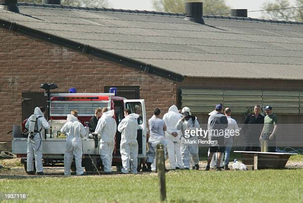 Workers from the Belgian Food Agency prepare to gas 40000 chickens to avoid an outbreak of a poultry flu April 17 2003 in Meeuwen Belgium The poultry...