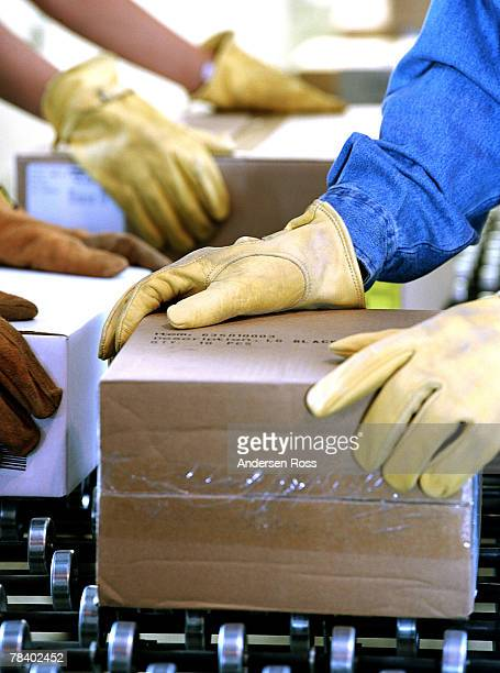 workers handling boxes