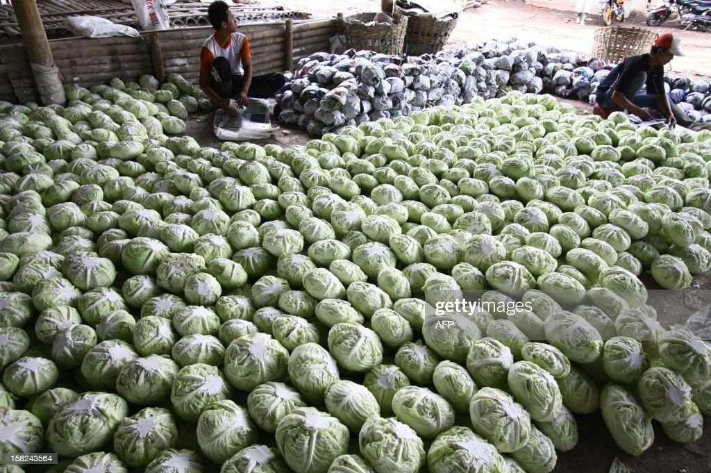 Workers in a market warehouse in Malang in East Java province wrap freshly harvested cabbages for export to neighboring Association of Southeast Asian Nations (ASEAN) countries Malaysia and Brunei on December 12, 2012. ASEAN secretary-general Surin Pitsuwan said during their meetings in November in Cambodia that the 10-member countries of ASEAN were moving closer to consolidate trade that would further cement a shift in global economic power from the West towards Asia.