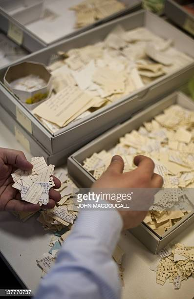 Workers in the former headquarters of the Stasi sort through hundreds of thousands of torn or shredded Stasi documents earmarked for destruction...