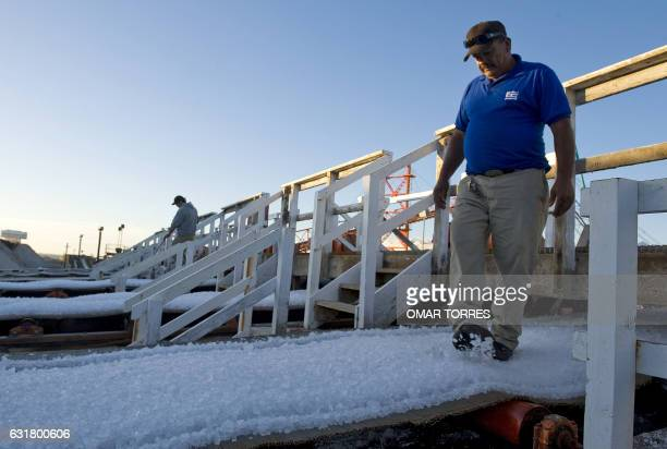 Workers inspect salt collected from dried ponds during the washing process at the Exportadora de Sal company plant in Guerrero Negro Baja California...