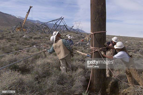 DWP workers install a temporary power pole to quickly fix one of two transmission lines that were down in the Owens Valley about 30 miles south of...