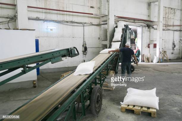 Workers load bags of refined white sugar onto an elevator at the EDF Man Ltd refinery in Nikolaev Ukraine on Friday Sept 22 2017 More sugar is coming...