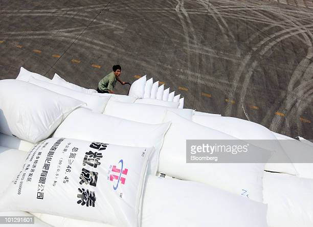 Workers load bags of urea at the China XLX Fertiliser Ltd plant in Xinxiang Henan province China on Saturday May29 2010 China XLX Fertiliser Ltd...