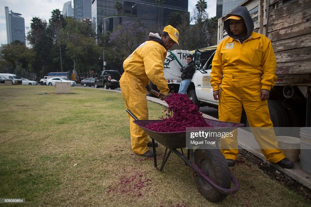 Workers make a silhouette of Pope Francis with colored wood chips at Angel de la Independencia monument on February 10, 2016 in Mexico City, Mexico. Mexico waits for the upcoming visit of Pope Francis on February 12-17.