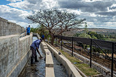 Workers of Mubuyu Farm coffee factory rake coffee in the water at the Mubuyu farm coffee factory in Zambia Coffee beans which dont float to the...