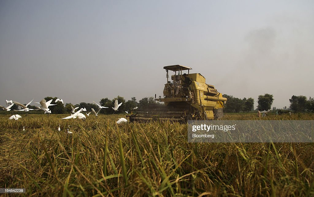 Workers operate a New Holland harvester to harvest rice in a paddy field in the Chiniot district of Punjab province, Pakistan, on Saturday, Oct. 13, 2012. Rice exports from Pakistan, the fourth-largest shipper, are set to rebound from November with the new harvest after a rally in domestic prices and cheaper supplies from India cut shipments, a traders' group said. Photographer: Asad Zaidi/Bloomberg via Getty Images