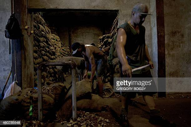 LEYRAL Workers process bags of copra the flesh of the coconut at the oil mill of Papeete on December 9 2014 10000 tons of copra are delivered...