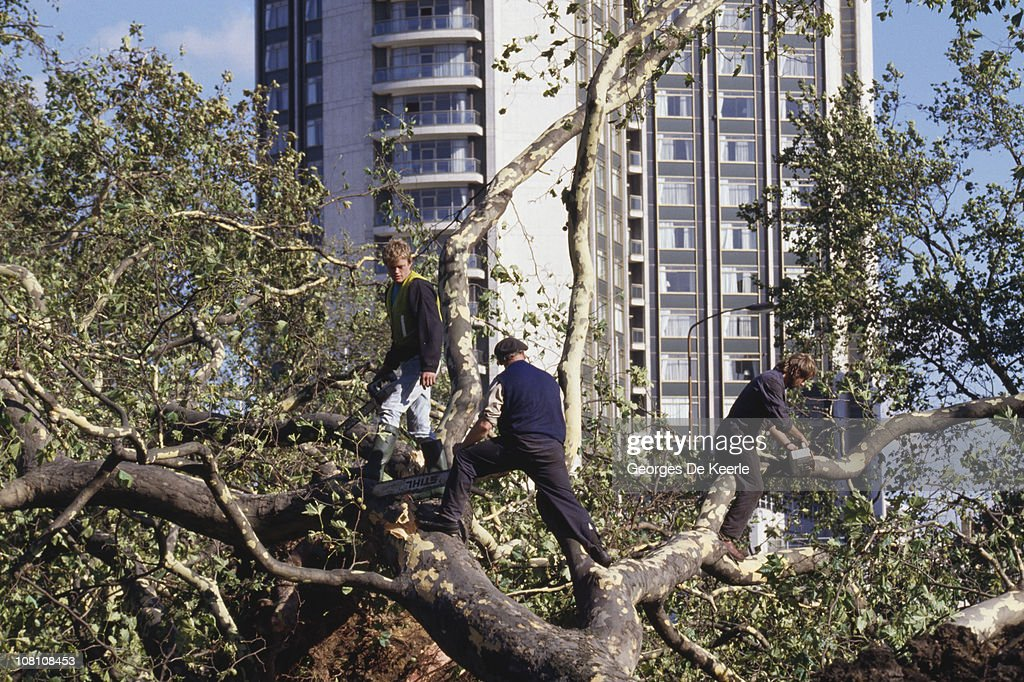 Workers sawing up fallen trees in England, in the aftermath of the Great Storm of 1987, 17th October 1987.