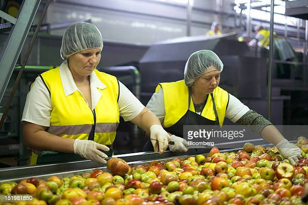 Workers select apples from a conveyor belt prior to pressing for Sandorabrand fruit juice on the production line at PepsiCo Inc's Sandora beverage...