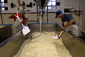 Workers shovel cheese curds in a vat at Vella Cheese on June 10 2014 in Sonoma California The Food and Drug Administration has issued an executive...