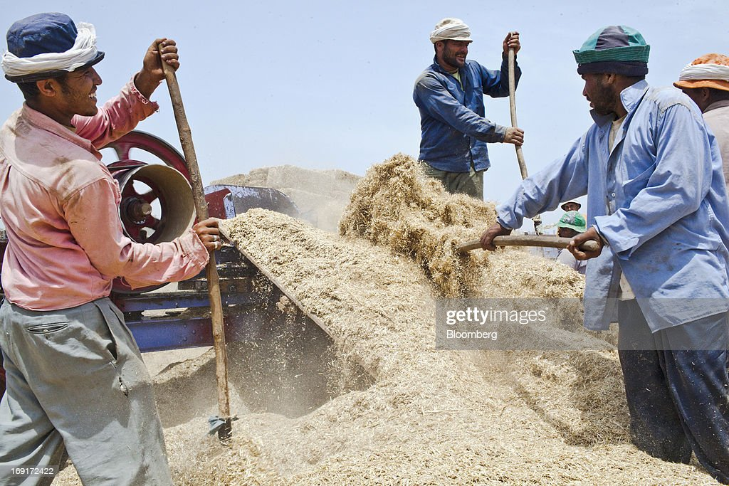 Workers sift wheat in a field in Monofeya, Egypt, on Sunday, May 19, 2013. Egypt will curb wheat imports by 31 percent to 8 million metric tons in 2012-13, still enough to make it the world's biggest buyer, the U.S. Department of Agriculture estimates. Photographer: Shawn Baldwin/Bloomberg via Getty Images